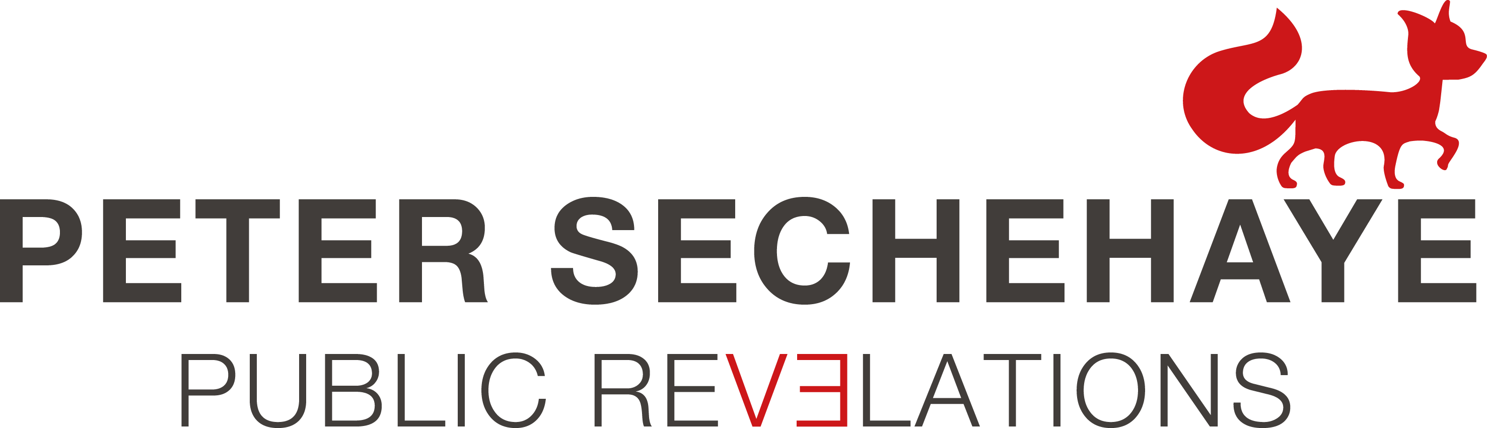 Peter Sechehaye PR, Logo